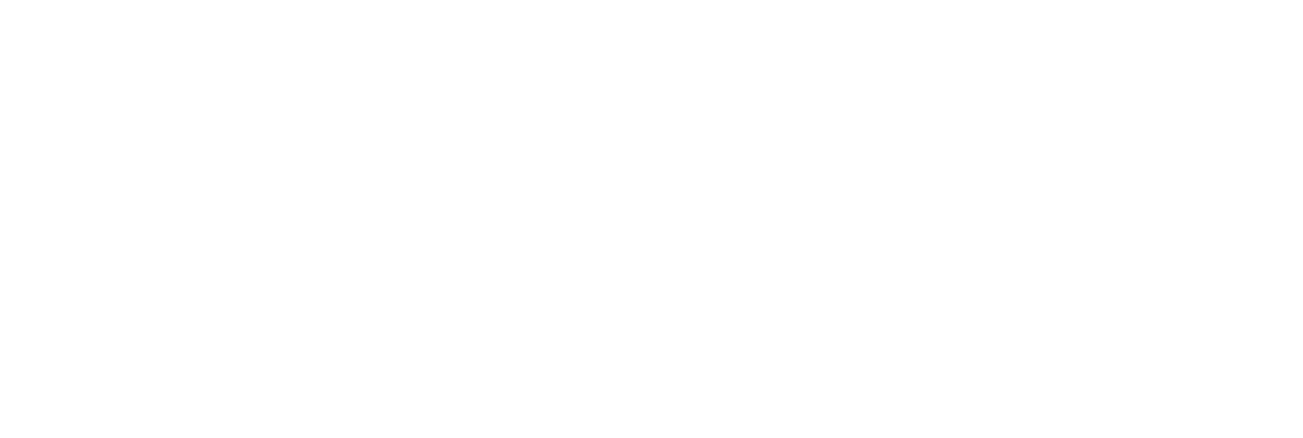DNVF Logo